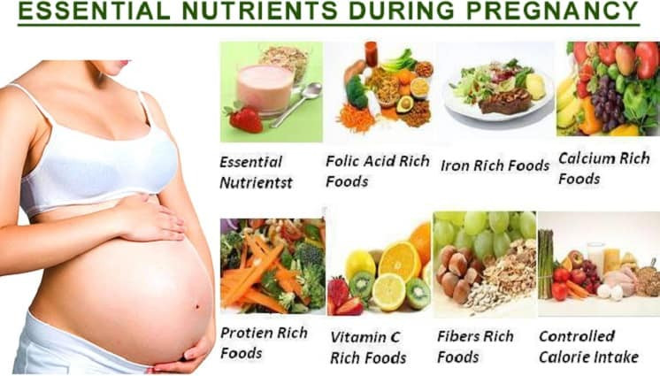 Healthy Snacks To Eat While Pregnant  What to Eat during Pregnancy for Intelligent Baby – Some