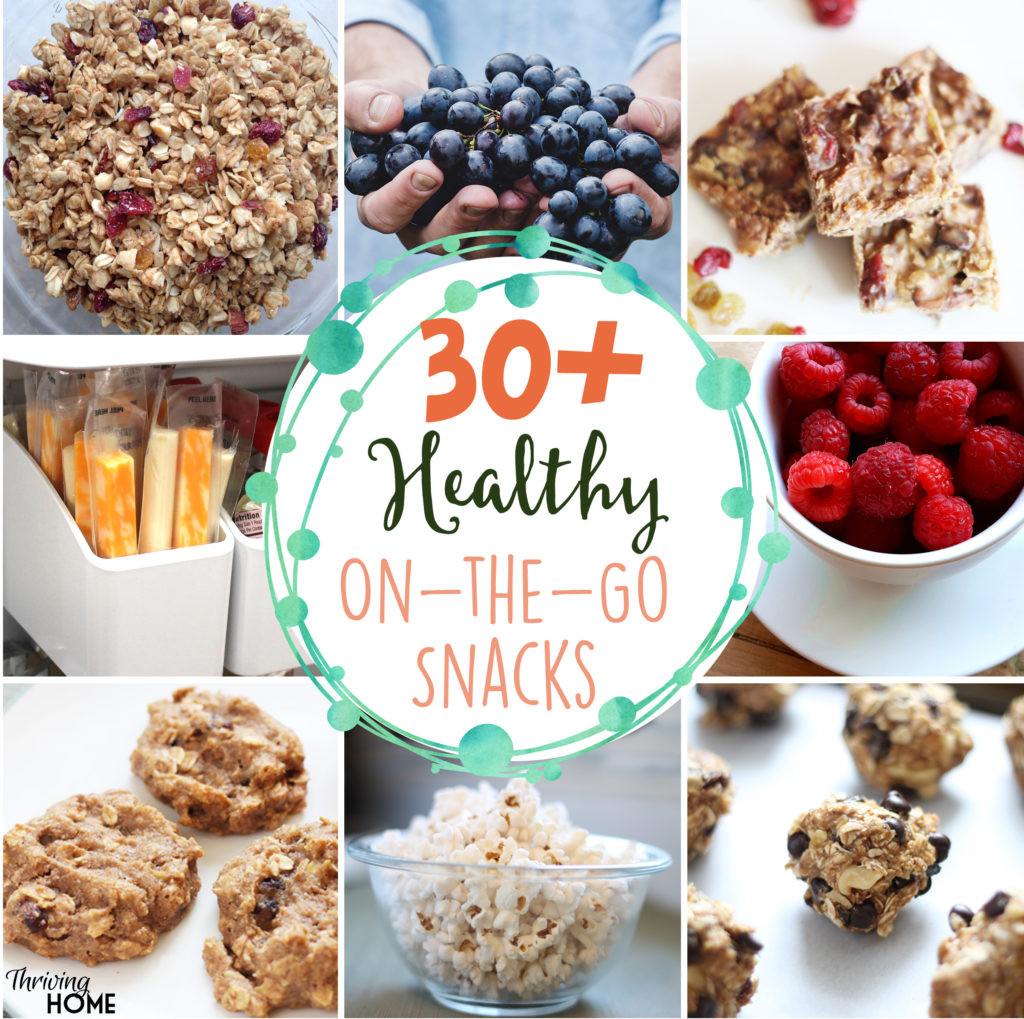 Healthy Snacks To Go  30 Healthy the Go Snacks and How I Get My Family to