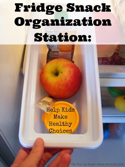 Healthy Snacks To Keep At Home  Helping Kids Make Healthy Food Choices Snack Organization