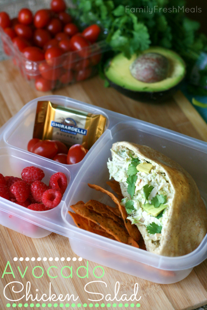 Healthy Snacks To Pack For Lunch  Over 50 Healthy Work Lunchbox Ideas Family Fresh Meals