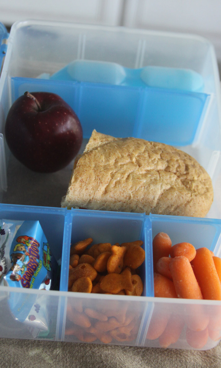 Healthy Snacks While Traveling  The Snack Pack – Feeding Kids Healthy While Traveling And
