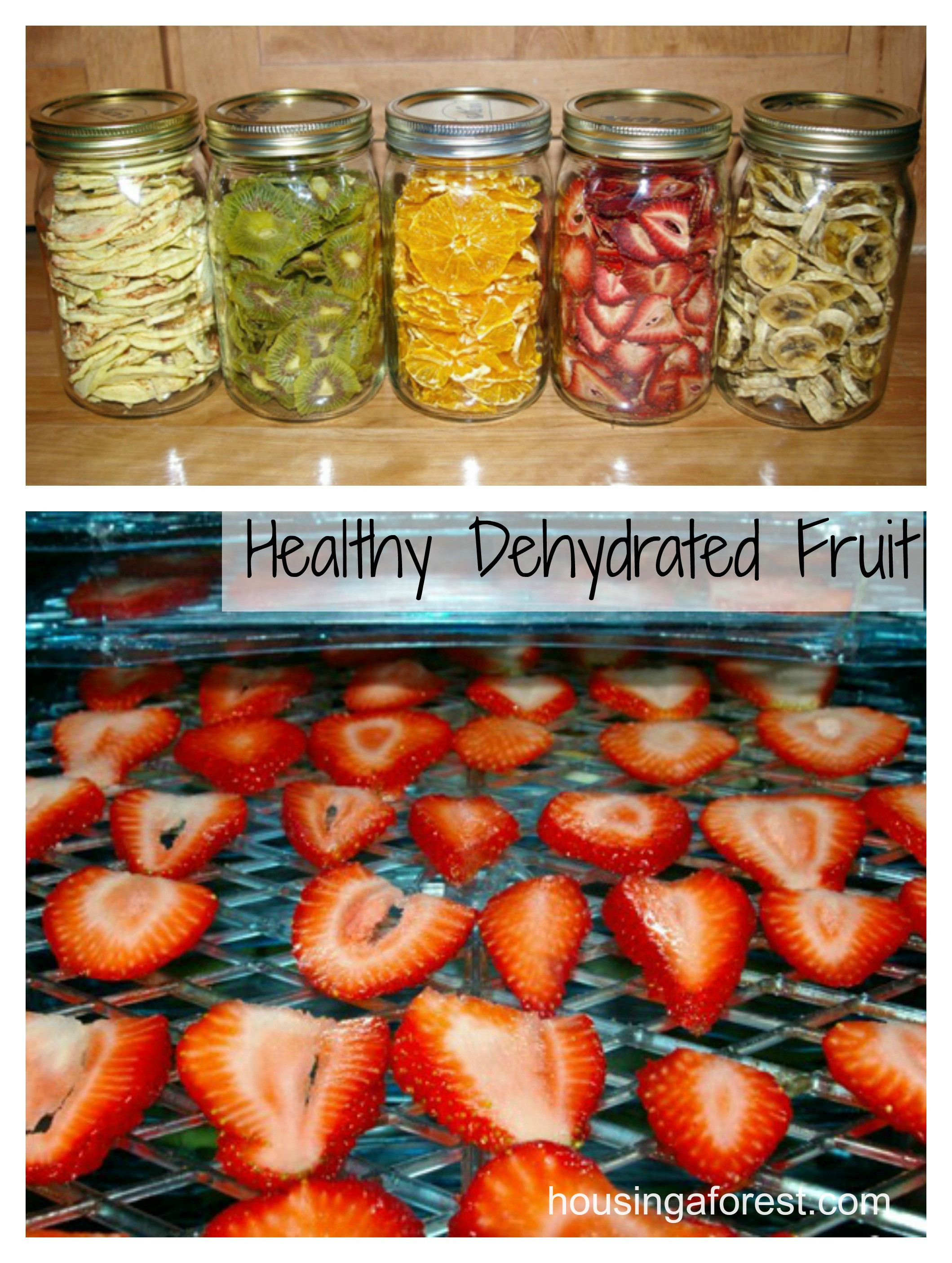 Healthy Snacks With Fruit  Healthy Dehydrated Fruit