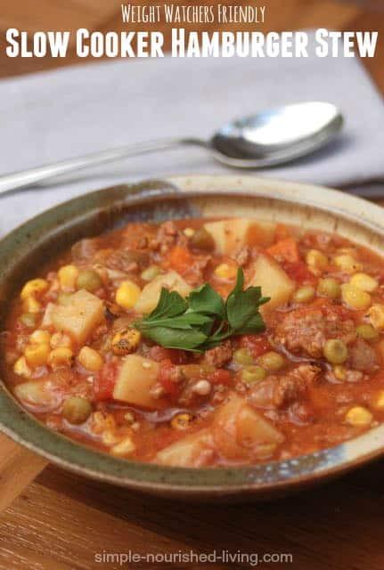 Healthy Stew Recipes Slow Cooker  Weight Watchers Slow Cooker Hamburger Stew