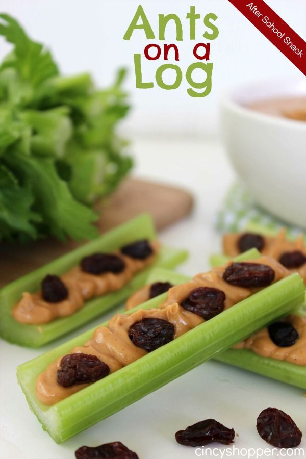 Healthy Tasty Snacks  ants on a log story