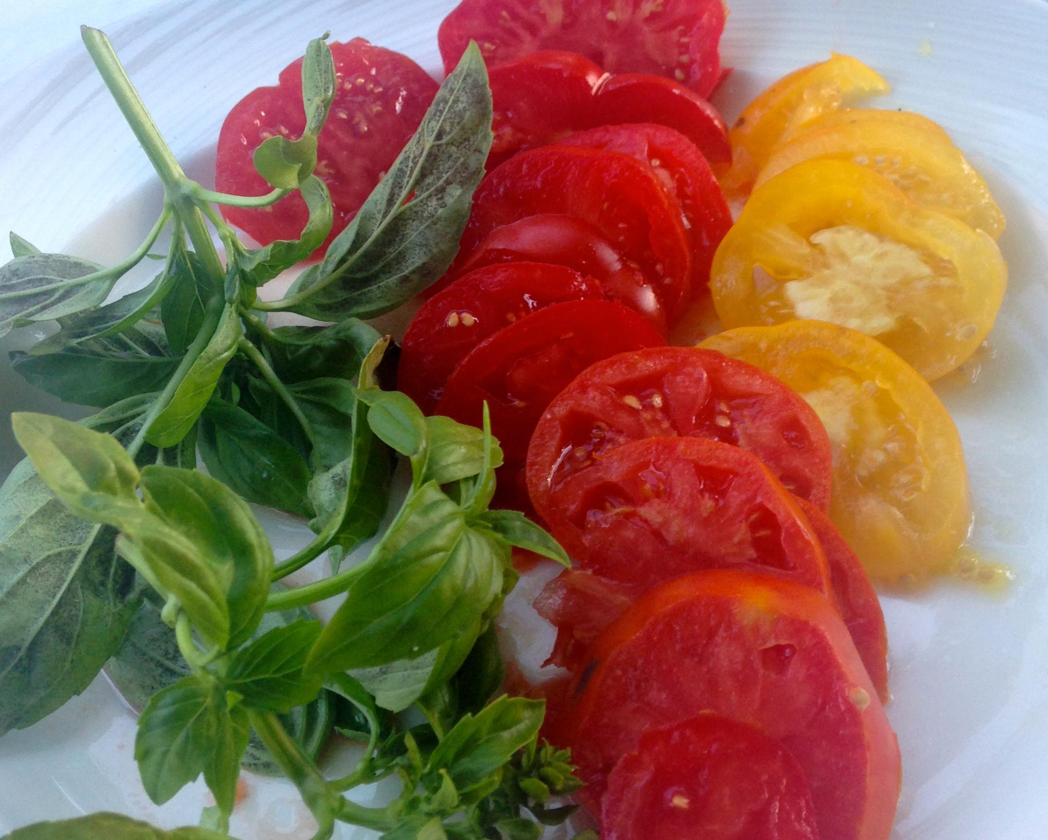 Healthy Tasty Snacks  Ten Healthy & Tasty Snacks – Katie Austin