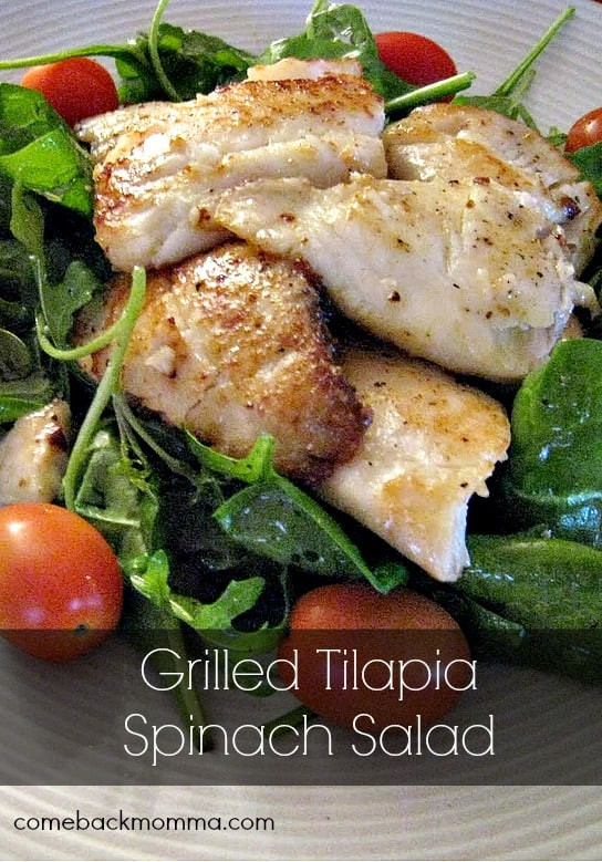 Healthy Tilapia Fish Recipes  Healthy Recipe Grilled Tilapia Spinach Salad eback Momma