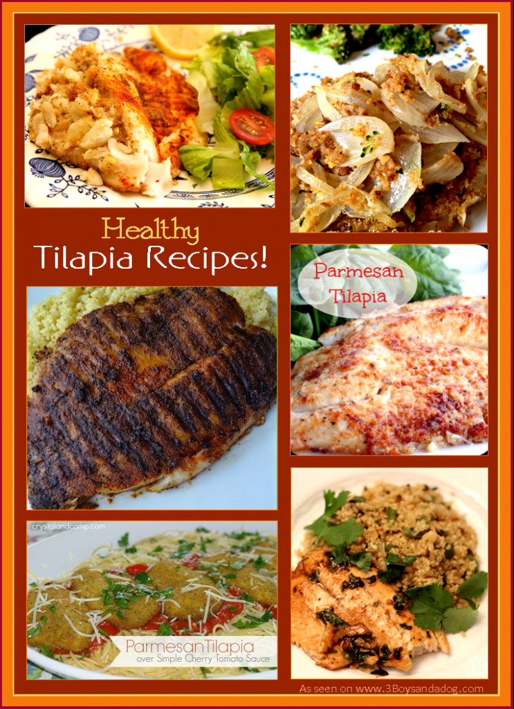 Healthy Tilapia Fish Recipes  14 Healthy Tilapia Recipes – 3 Boys and a Dog