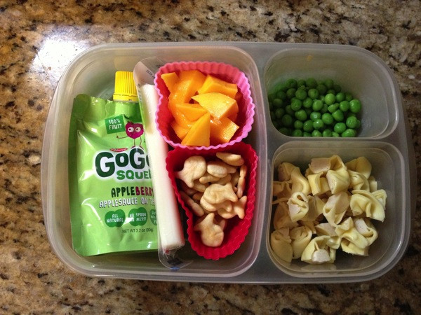 Healthy Toddler Lunches  Easy to pack lunches for toddlers and preschoolers