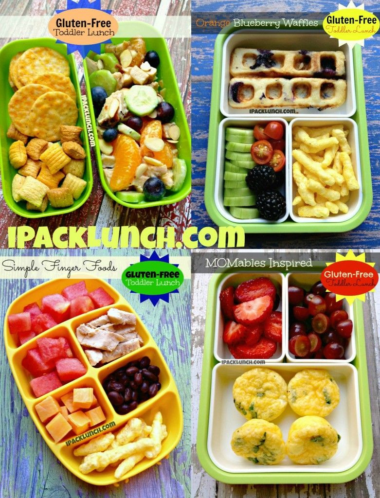 Healthy Toddler Lunches  Gluten free toddler preschool healthy lunch ideas