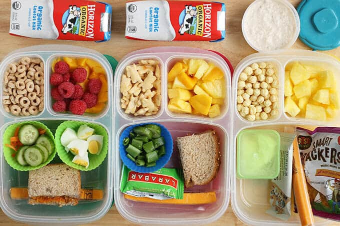 Healthy Toddler Snacks On The Go  15 Toddler Lunch Ideas for Daycare No Reheating Required
