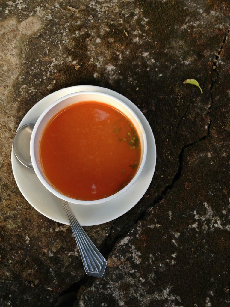 Healthy Tomato Soup Recipe  Quick Healthy Tomato Soup & An Ayurvedic Retreat in Kerala