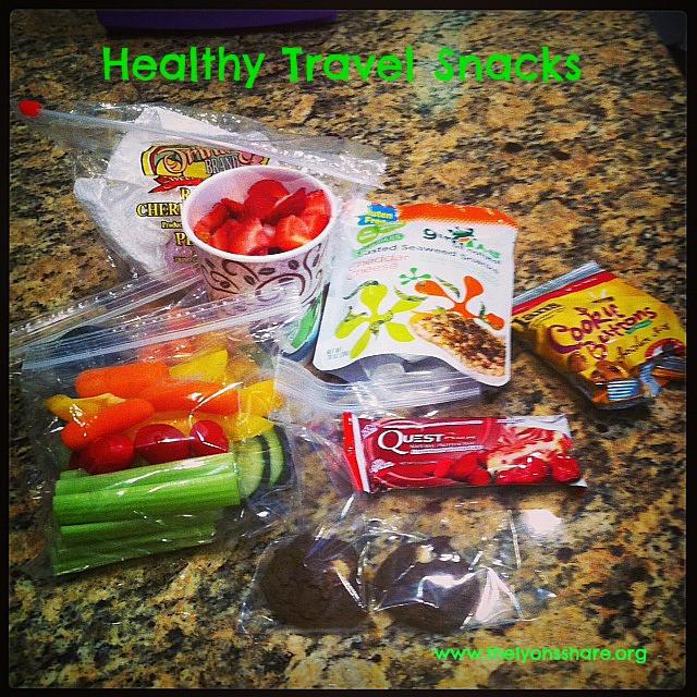 Healthy Travel Snacks  Top Healthy Travel Snacks packing satisfying travel food