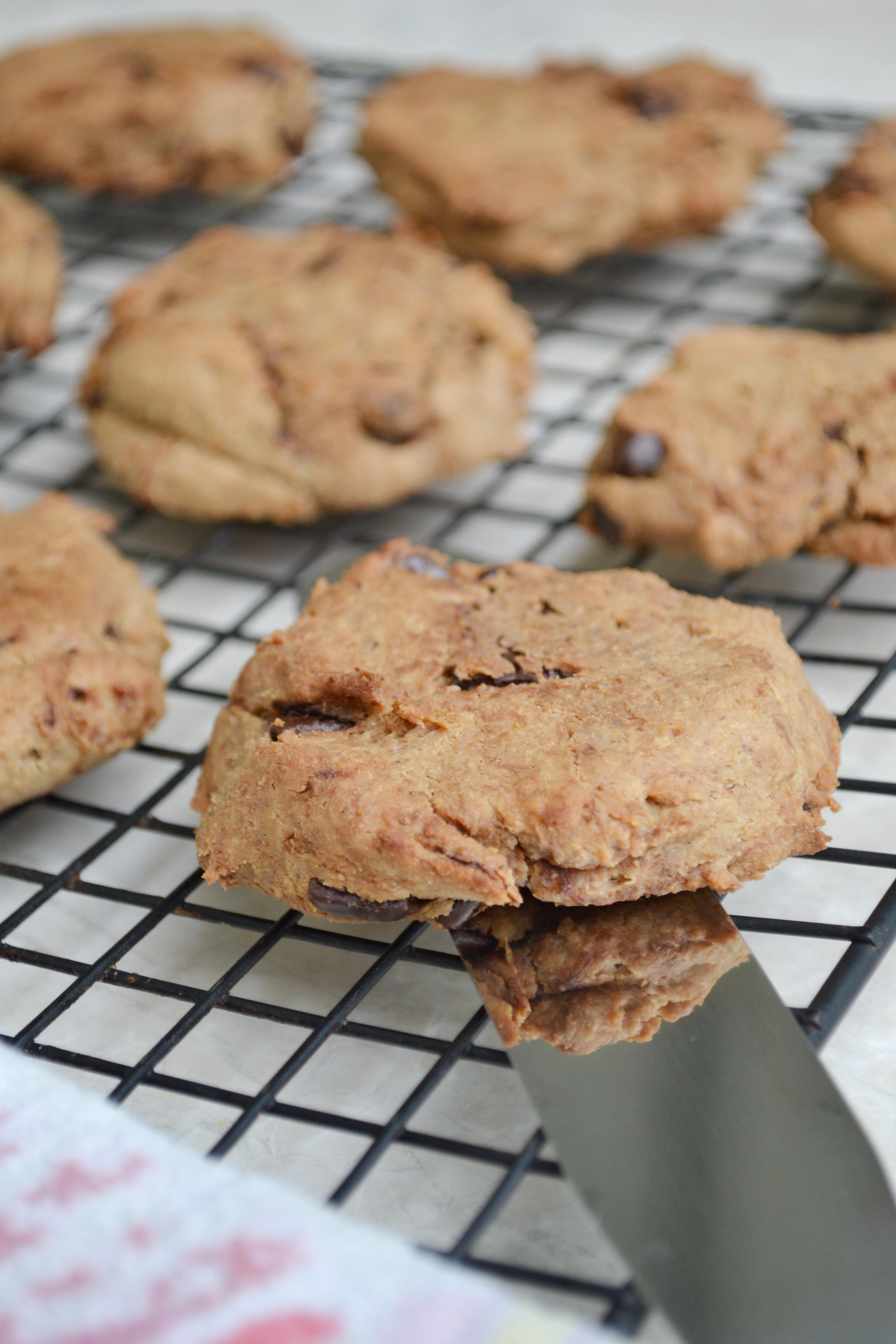 Healthy Vegan Cookie Recipes  Healthy Vegan Cookie Recipe HealthyJon
