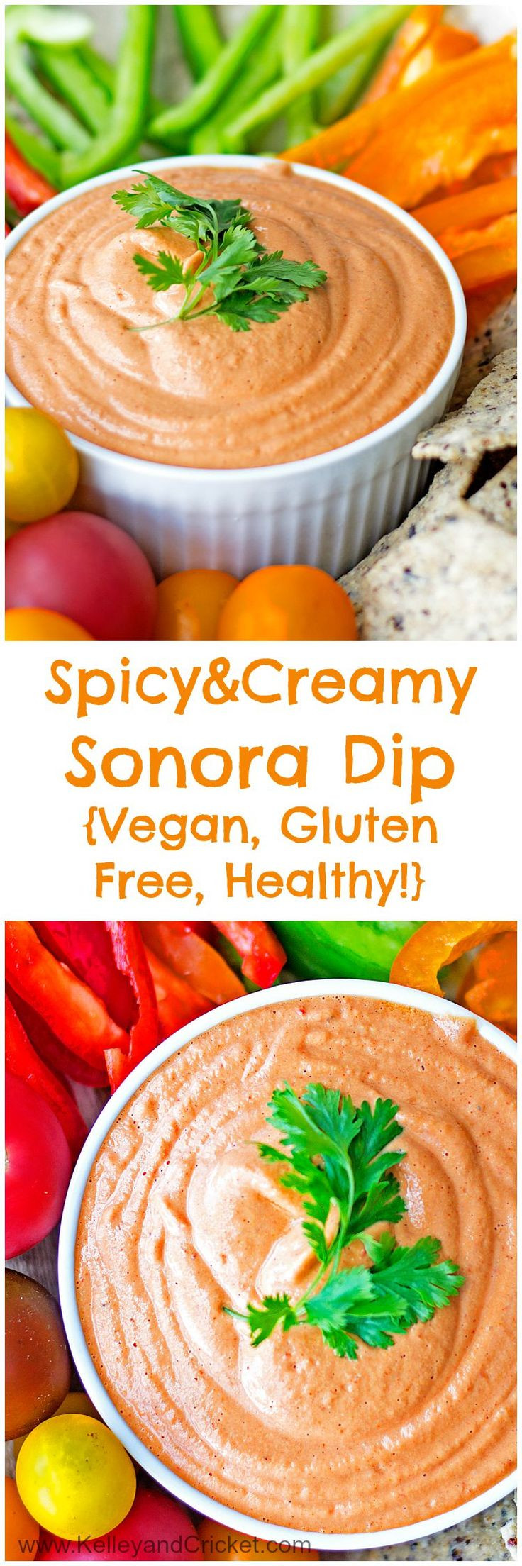Healthy Vegan Gluten Free Recipes  Spicy & Creamy Sonora Dip Gluten Free Vegan Healthy