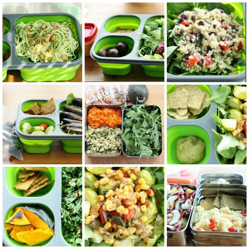 Healthy Vegan Lunches  Tips For Packing a Healthy and Satisfying Vegan Lunchbox
