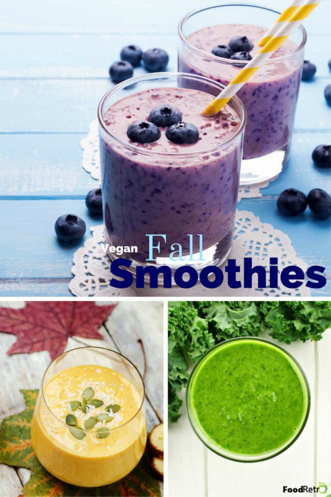 Healthy Vegan Smoothies  3 Vegan Smoothie Recipes to Keep You Healthy This Fall