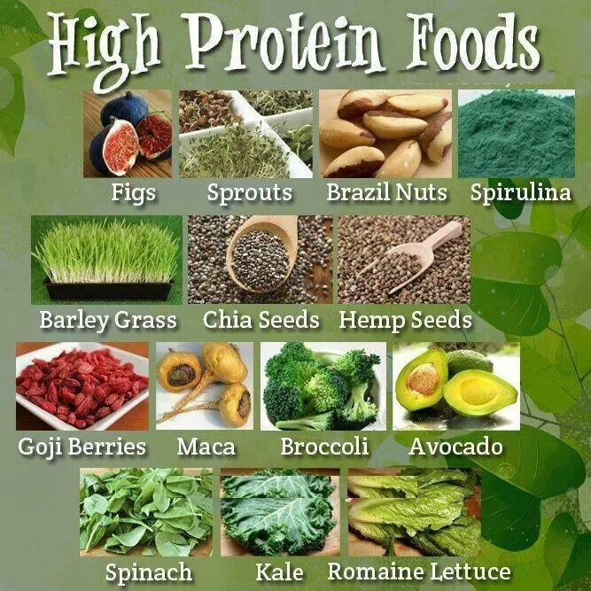 Healthy Vegetarian Protein  Healthy proteins for ve arian great health