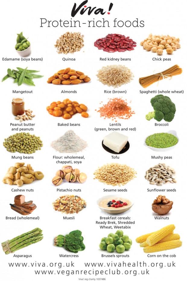 Healthy Vegetarian Protein  VEGAN PROTEIN RICH FOODS — Forking Fit