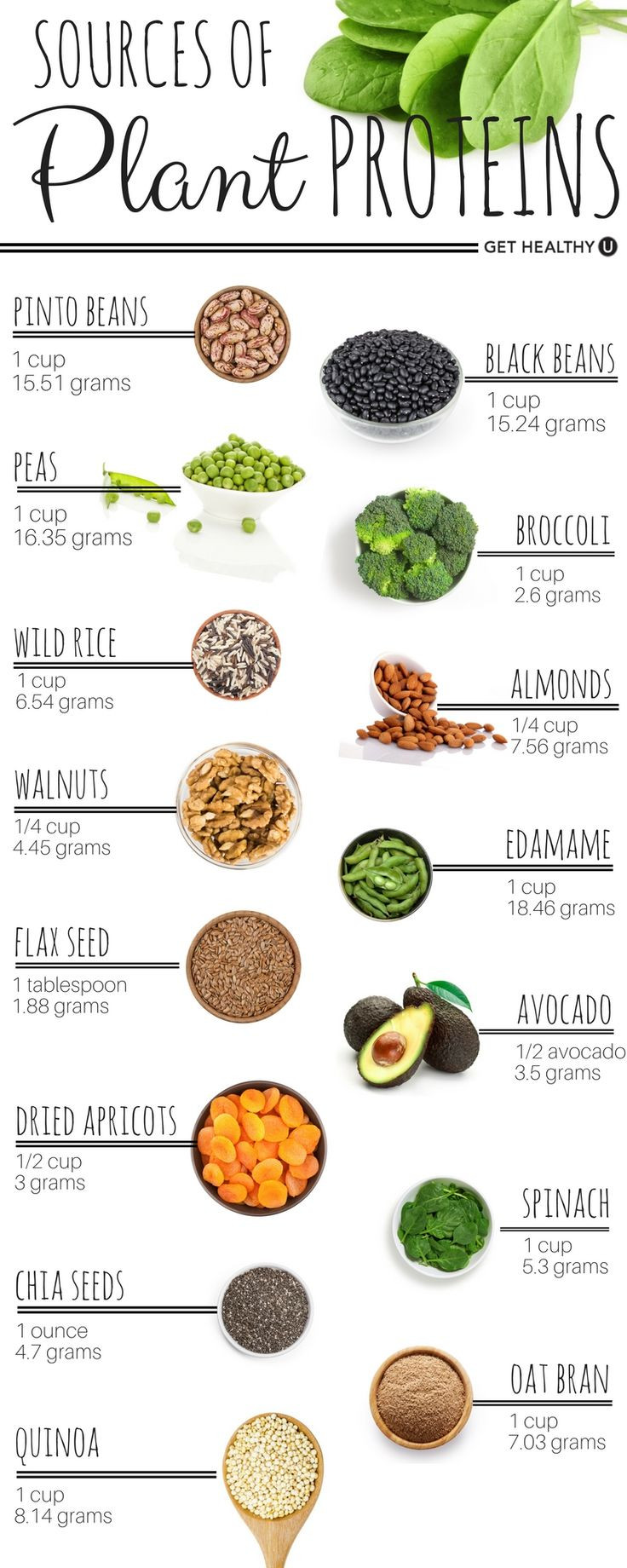 Healthy Vegetarian Protein  58 best Protein Chart images on Pinterest