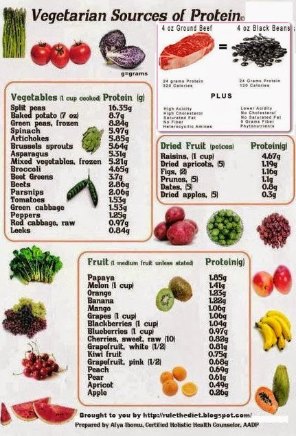 Healthy Vegetarian Protein  Healthy Diet Tips that Help Form Better Food Habits