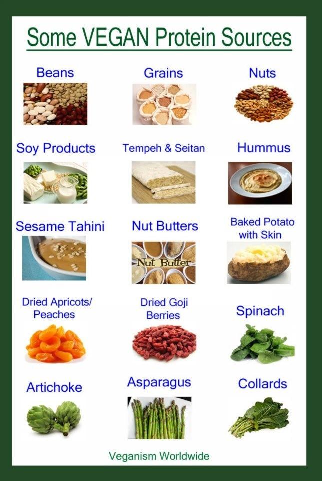 Healthy Vegetarian Protein  21 best images about Staple Vegan Protien on Pinterest