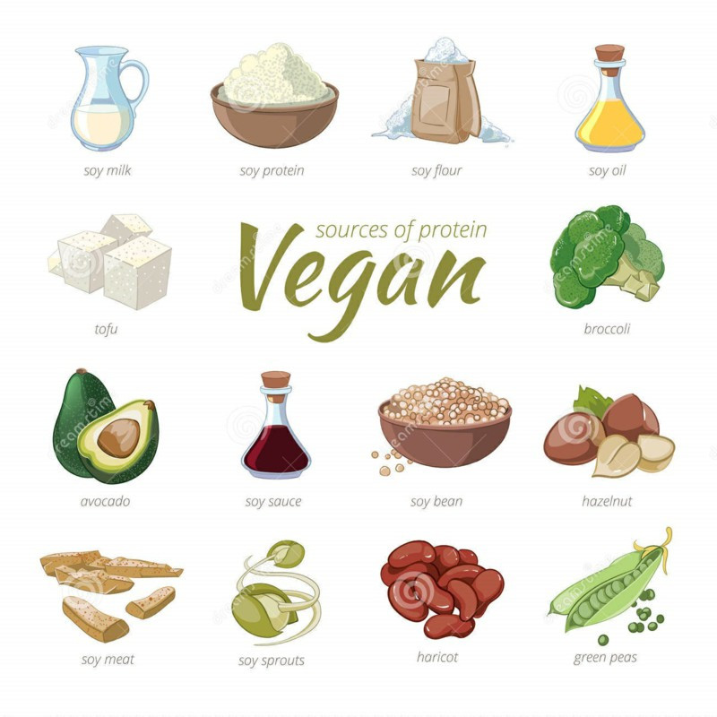 Healthy Vegetarian Protein  Ve able Protein What Foods Are Good Sources Protein