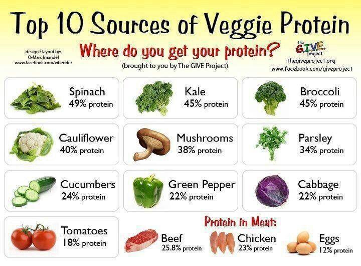 Healthy Vegetarian Protein  Veggie Protein Sources