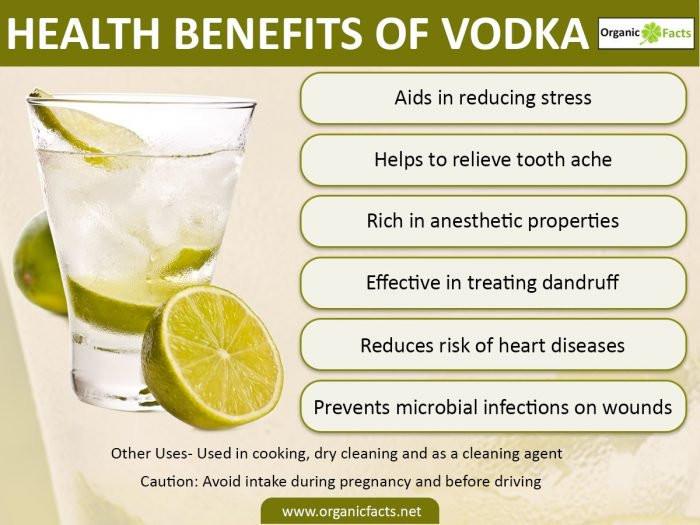 Healthy Vodka Drinks  Top 7 Impressive Benefits of Vodka