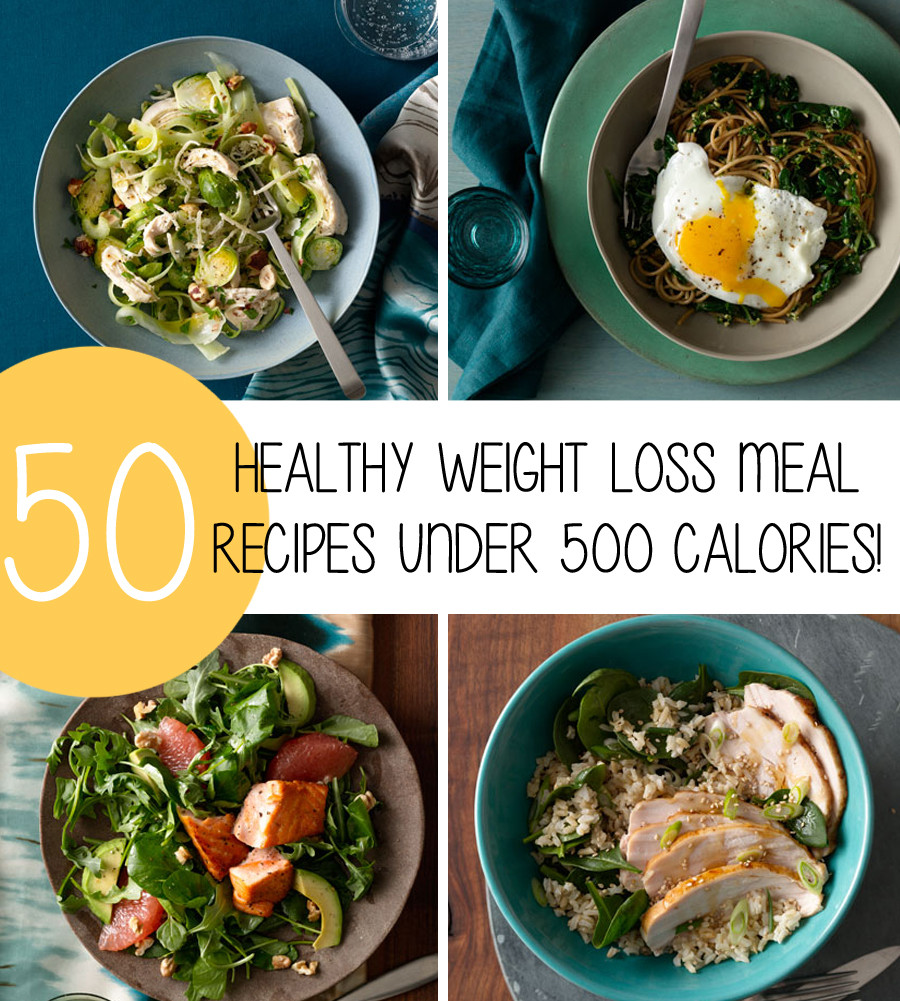 Healthy Weight Loss Dinners  50 Healthy Weight Loss Meal Recipes Under 500 Calories