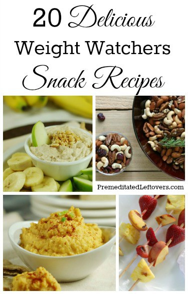 Healthy Weight Watchers Snacks  20 Weight Watchers Snack Recipes Premeditated Leftovers