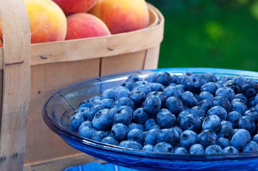 Heart Healthy Juice Recipes  Heart Healthy Juicer Recipes – JuicerRecipesPro