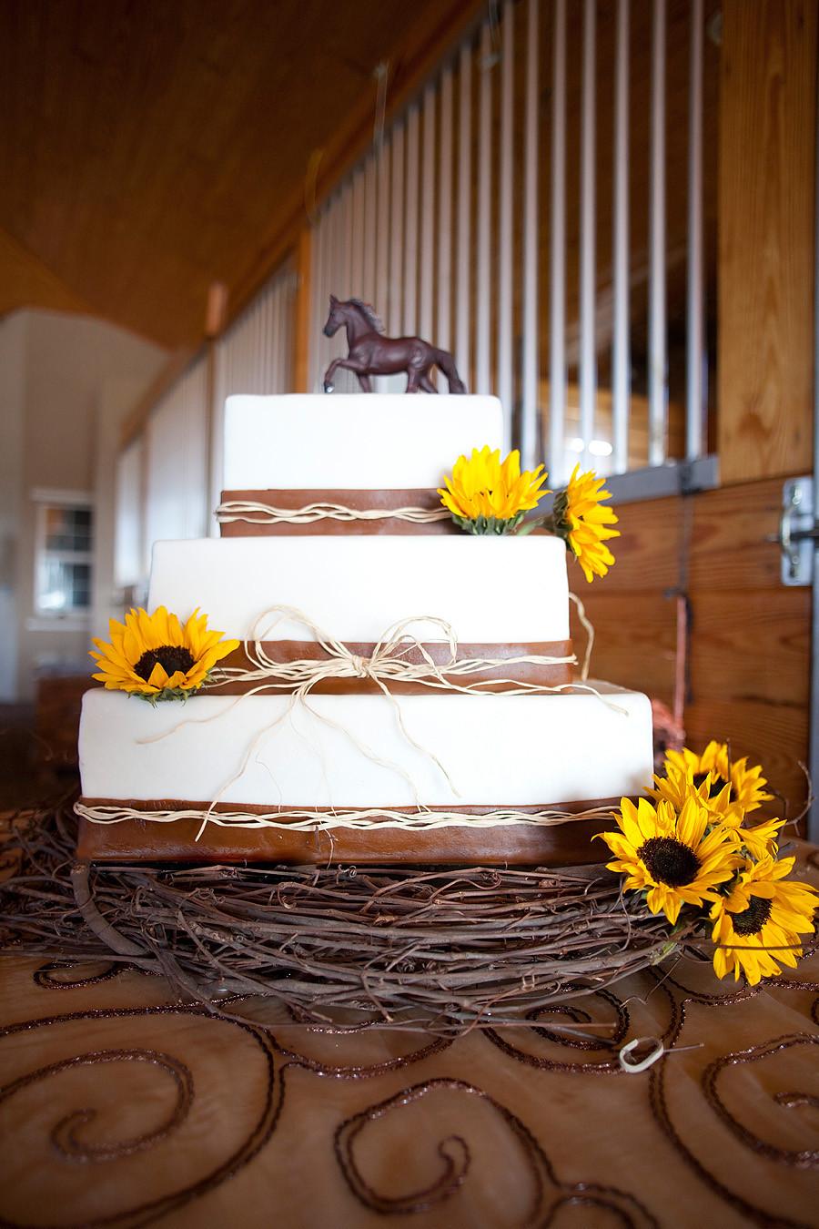 Horse Wedding Cakes  Bridle & Bridal