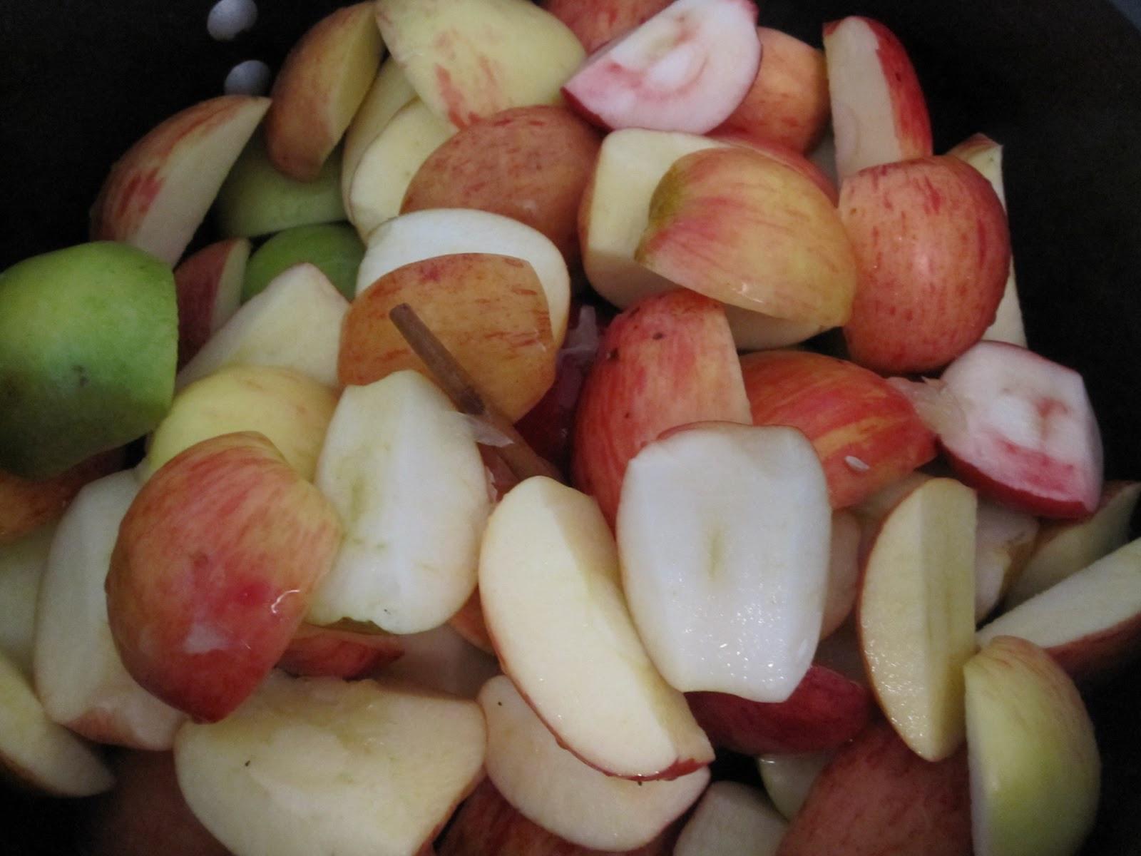 Indian Summer Applesauce  WineBookGirl Maple Cranberry Apple Sauce