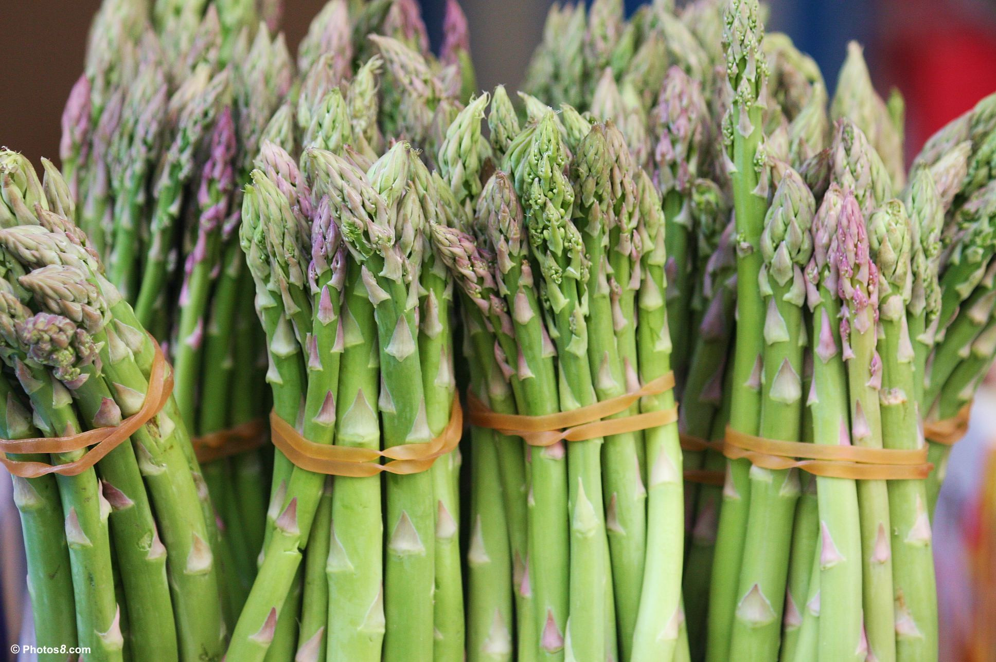 Is Asparagus Healthy  Asparagus Centegra Healthy Living InstituteCentegra