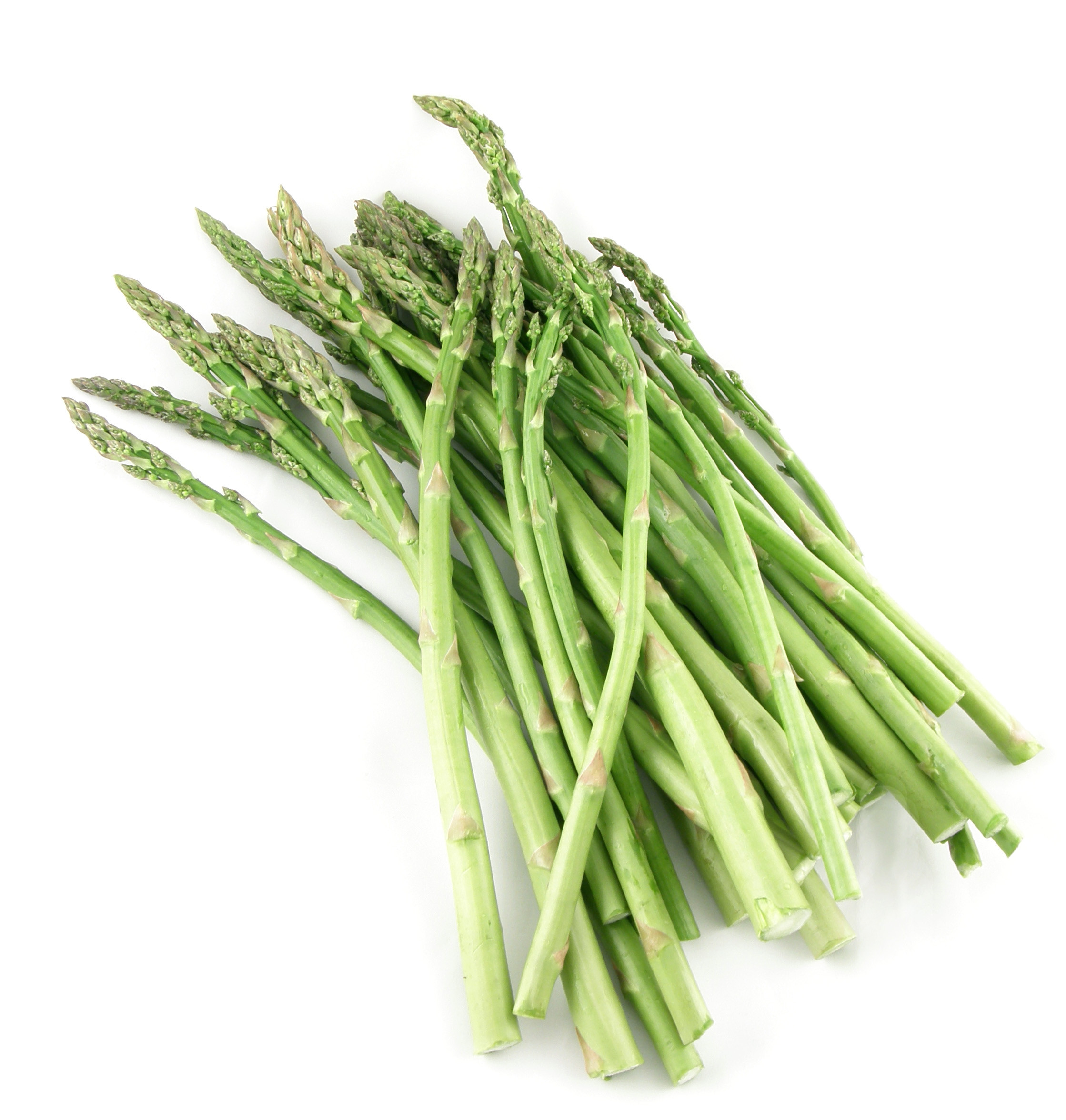 Is Asparagus Healthy  Health Benefits of Asparagus Shatavari