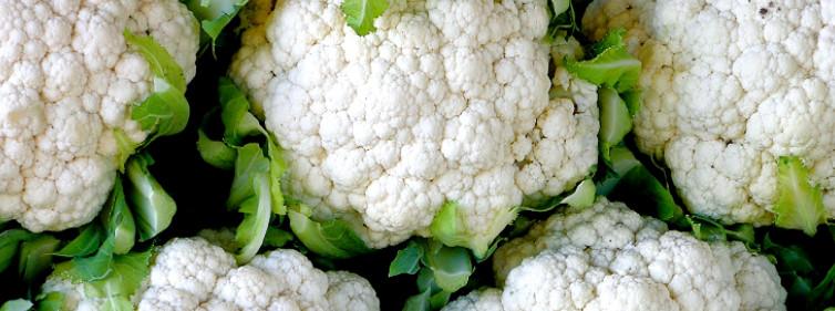 Is Cauliflower Healthy  Is Cauliflower Healthy The Health Benefits of Cauliflower