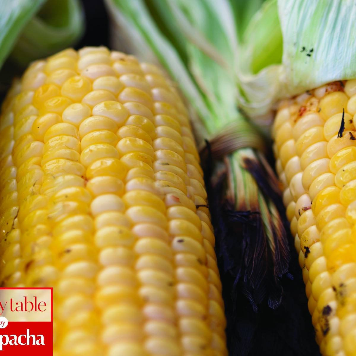 Is Corn Kosher For Passover  Spicy BBQ Corn Recipes