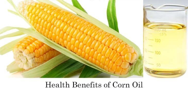Is Corn Oil Healthy  Health Benefits Corn Oil