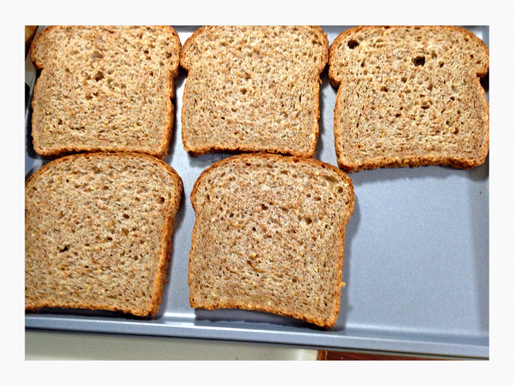 "Is Ezekiel Bread Healthy  ""Ezekiel"" Bread Crumbs – A Healthier Alternative"