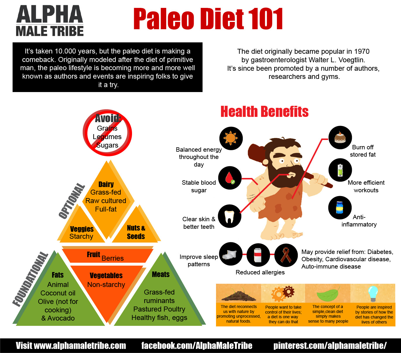 Is Paleo Diet Healthy  What is the Paleo Diet Bundilla Clinic