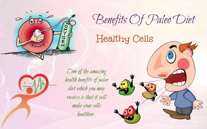 Is Paleo Diet Healthy  Top 8 Health And Nutritional Benefits Paleo Diet