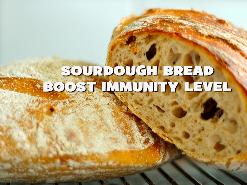 Is Sourdough Bread Healthy For You  Health Benefits Sourdough Bread Nutrition Inside