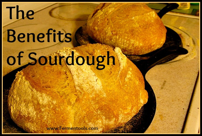 Is Store Bought Sourdough Bread Healthy  The Benefits of Sourdough