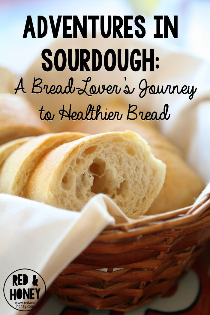 Is Store Bought Sourdough Bread Healthy  91 best images about Side Dishes on Pinterest