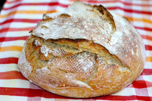 Is Store Bought Sourdough Bread Healthy  Should You Go Grain Free An Interview With Ann Marie