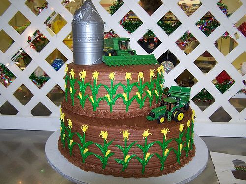 John Deere Wedding Cakes  1000 images about Grooms Cakes on Pinterest