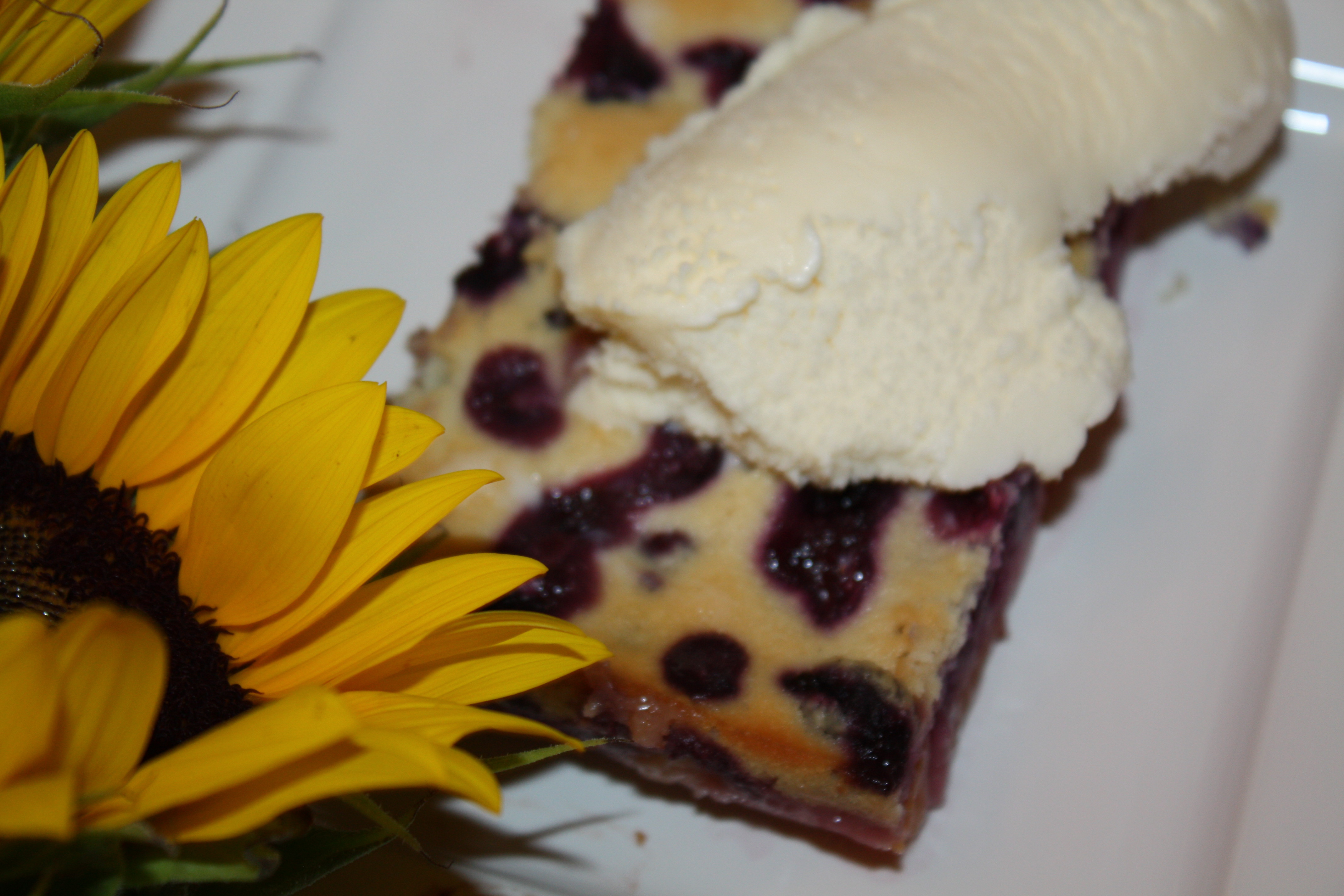 Light Desserts For Summer  Light Summer Desserts