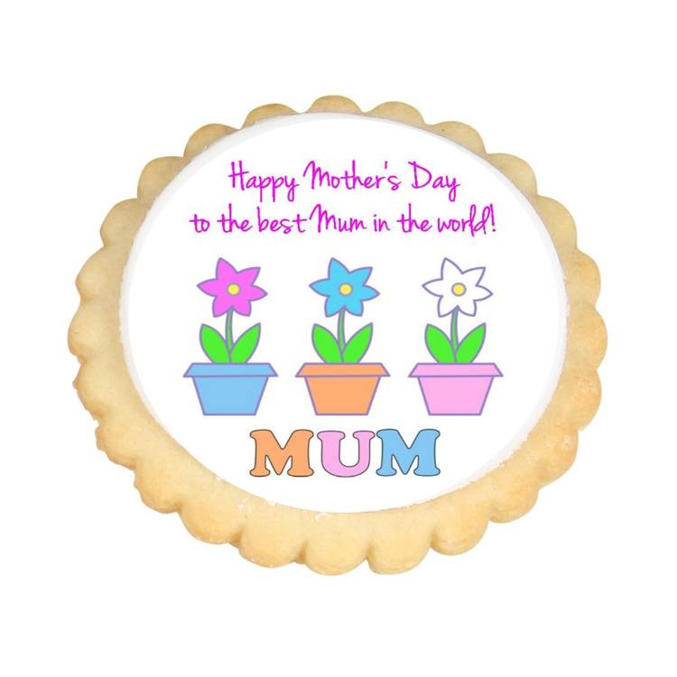 Mother'S Day Sugar Cookies  Flower Pots Mother s Day Cookies