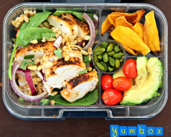 On The Go Healthy Lunches  Bento Box Lunch Ideas 25 Healthy and Worthy Bento