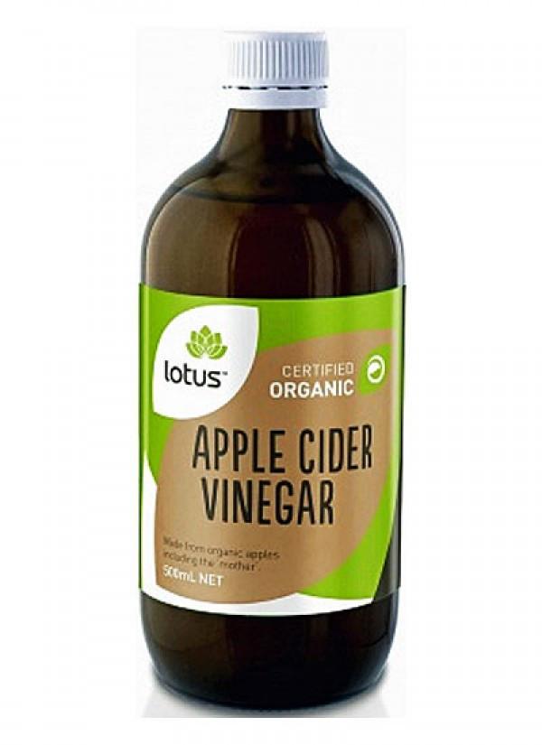 Organic Apple Cider Vinegar Recipes  Lotus Organic Apple Cider Vinegar 500ml Natural Health